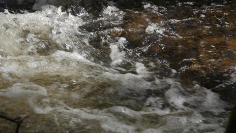 Mountain river in the forest close up Footage