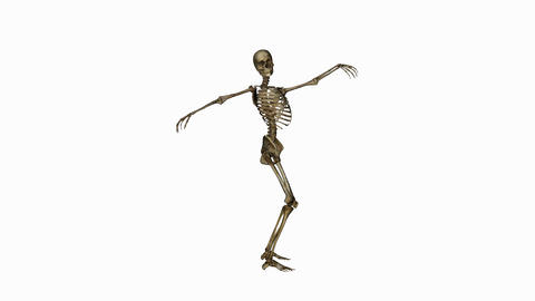 Skeleton Funny Dance,alpha channel Animation
