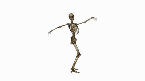 Skeleton Funny Dance,alpha channel Animation
