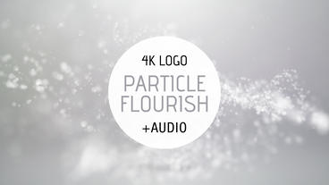 Particle Flourish Logo Reveal After Effects Template