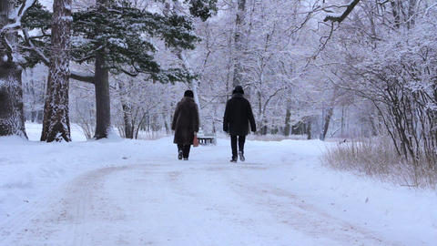 Elderly Couple In Winter Park stock footage