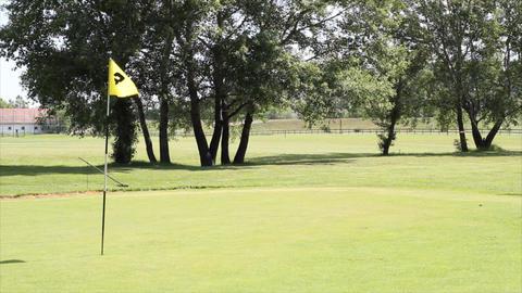 golf yellow flag Footage