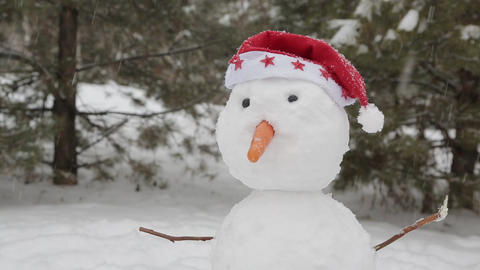 The cheerful snowman standing in the snow 2 ビデオ