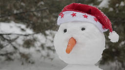 The cheerful snowman standing in the snow 3 ビデオ