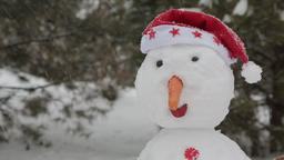 The cheerful snowman standing in the snow 5 ビデオ