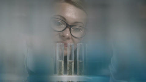 Female scientist examining test tube in lab Footage