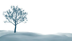 Mysterious winter landscape majestic mountains in winter Animation