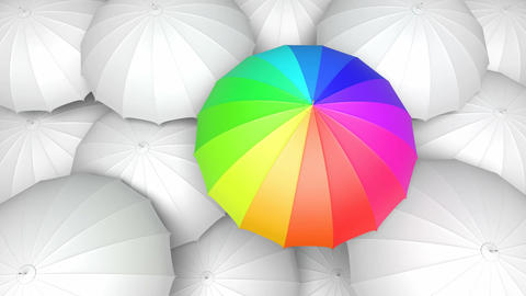 Looping 3D animation of the colorful umbrella standing out from the others Animation