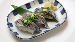 Lightly Broiled Pacific Saury Sushi Live Action