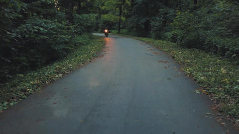 Biker riding a motorcycle on a road surrounded by trees Footage