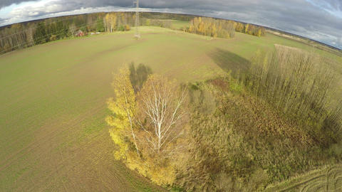 autumn november farmland landscape with trees and crop fields,aerial view ビデオ