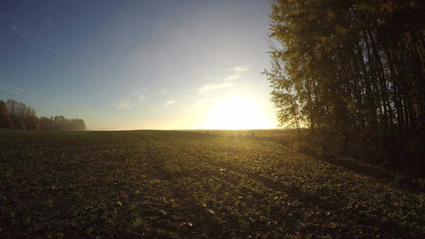 Autumn sunrise over misty morning fields and tree groves, time lapse Footage