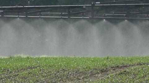tractor spraying crop field, sprayer detail Live Action