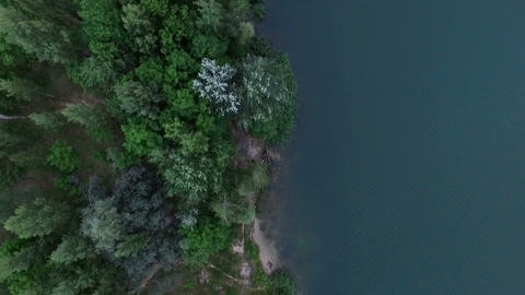 Aerial - forest lake from the top view Footage