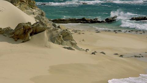 200 FPS Real Slowmo, Nice beach with slowmo water waves Footage