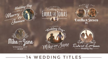 Wedding Titles stock footage