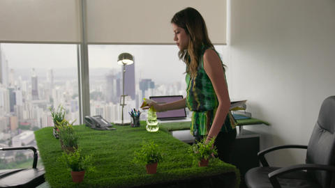 5 Ecologist Business Woman Watering Plants In Corporate Office Footage