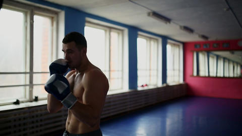 Muscular male professional boxer trains by punching bag at the gym in Boxing Footage