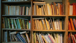 Horizontal Panorama of Shelves with Different Books and a... Stock Video Footage
