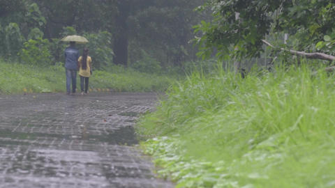 Lovers walking down a road in rain Footage