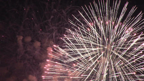 Fireworks show Live Action