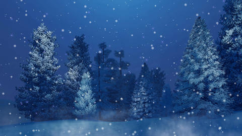 Snowy fir forest at snowfall winter night Cinemagraph Animation