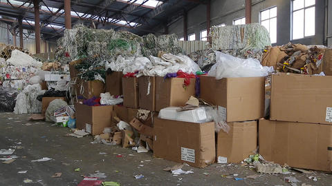 Big Factory For Recycling Paper and Carboard Live Action