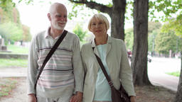 Senior couple walking in park. Active modern life after retirement. Family Footage