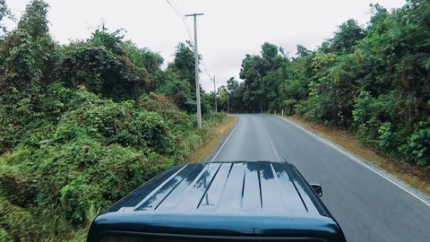 a pickup truck ride through the jungle Footage