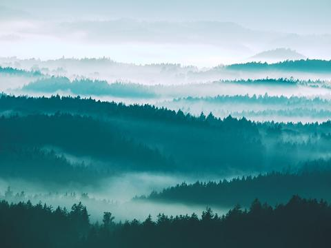 Autumn sunrise. Deep forest in a beautiful hilly landscape within inversion Photo