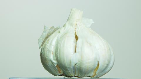 Garlic rotating on isolated background