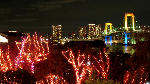 Timelapse of Tokyo nightscape illuminated in holiday colors Footage