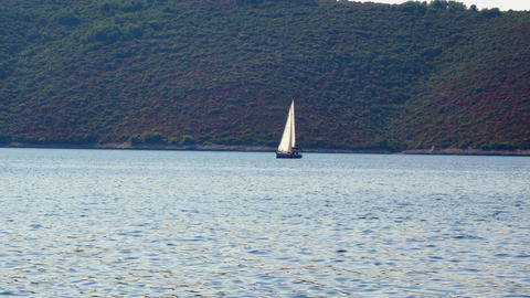 Siling boat sailing in Adriatic sea with green forest on small island in back Footage