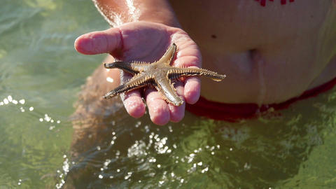 Girl playing with small live sea star she found in the sea Footage