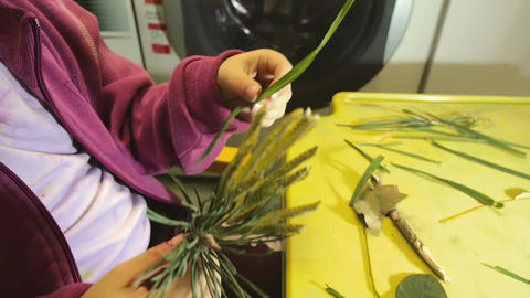 Little girl playing and making decorations out of dry plants Footage