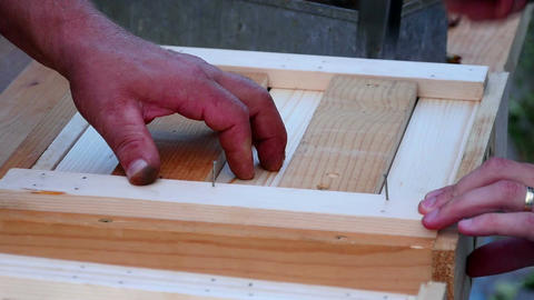 Two males hammering steel nails in to wooden frame Bild