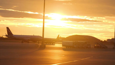 Airplanes and ground support equipment against sunset sky at Sheremetyevo Live Action