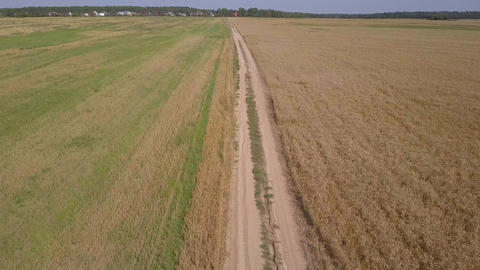 Aerial: flying above dirty road between agricultural fields Footage