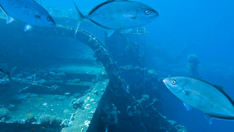 Ship wreck Salem Express Footage