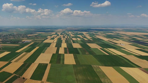 Aerial landscape multicolor agriculture fields Footage