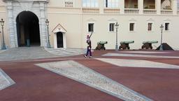 Prince Company of Carabiniers 2 Footage