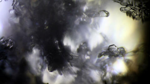 Dark Background Of The Snowflake Crystals In Microscope Footage