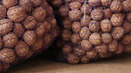 Walnuts in bag tracking camera ライブ動画