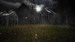 Grass at night Animation