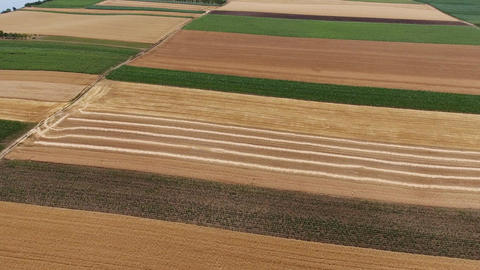 Aerial view of agriculture fields in Serbia Footage