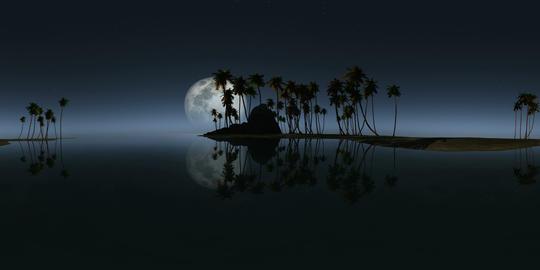 360 rocky island palms beach moon 264 1 VR 360° 動画