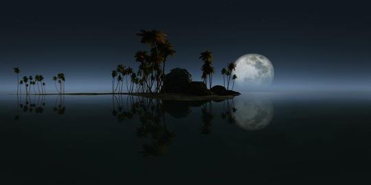360 rocky island palms beach moon 264 3 VR 360° 動画