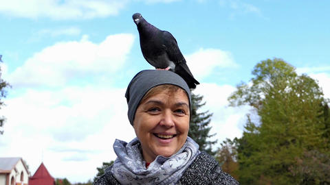 A happy woman with a grey dove on her head in slo-mo Footage