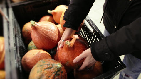 Beautiful Girl is choosing a Pumpkin in a basket with vegetables at the fair for Footage