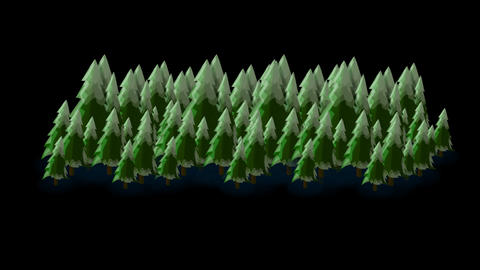 Pine Trees Footage 3 Alpha Channel Image